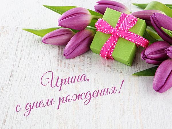 tulips with gift